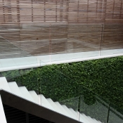 Glass Balustrading Stairs 6