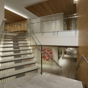 Glass Balustrading Stairs 9