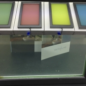 Switchglass™ Coloured Green On